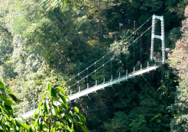 つつじ橋9