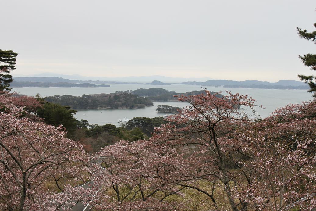 松島IMG_3970