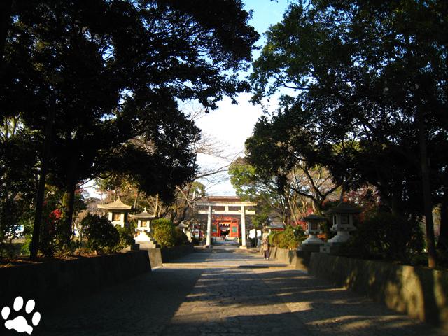 shizuoka_03fujinomiya3.jpg