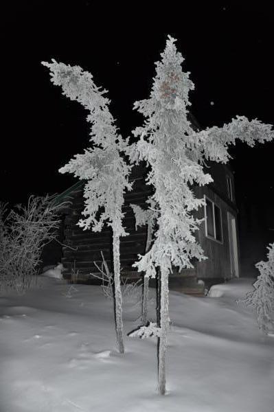 アラスカ写真010