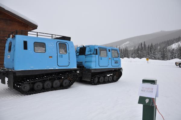 アラスカ写真019