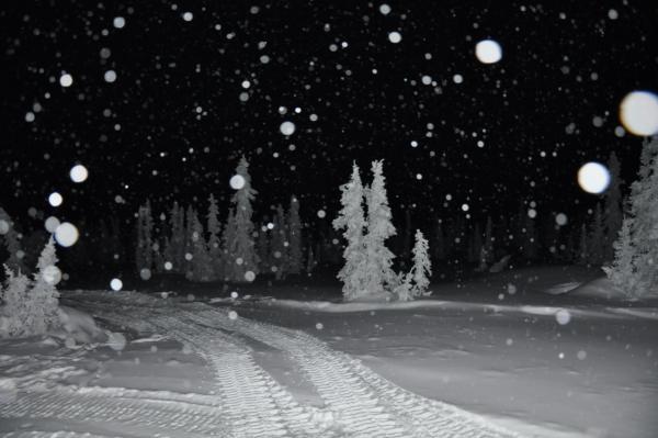 アラスカ写真032