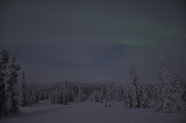 アラスカ写真035