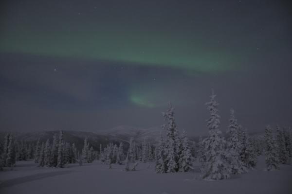 アラスカ写真037