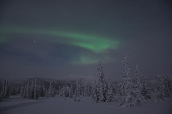 アラスカ写真039
