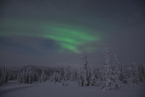 アラスカ写真040
