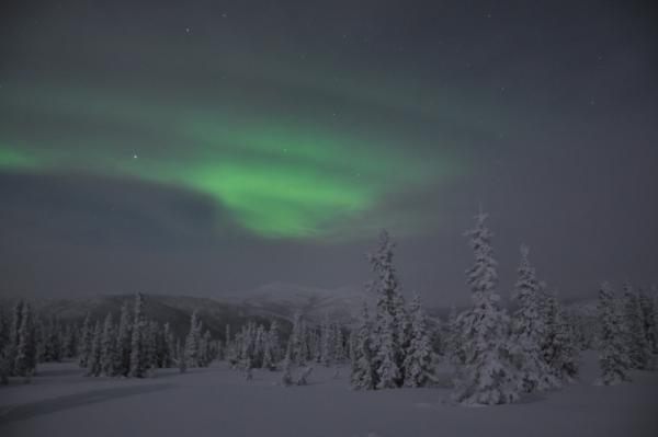 アラスカ写真041