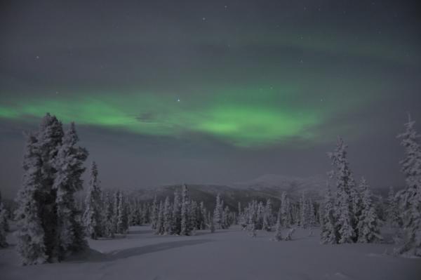 アラスカ写真043
