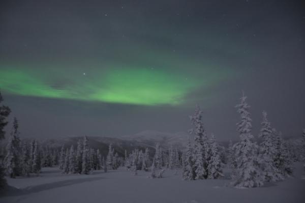 アラスカ写真044