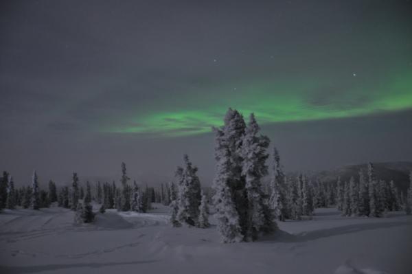 アラスカ写真045