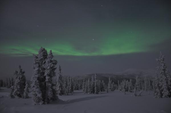 アラスカ写真046