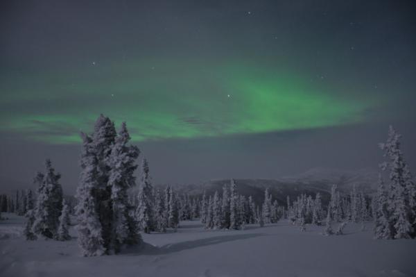 アラスカ写真047