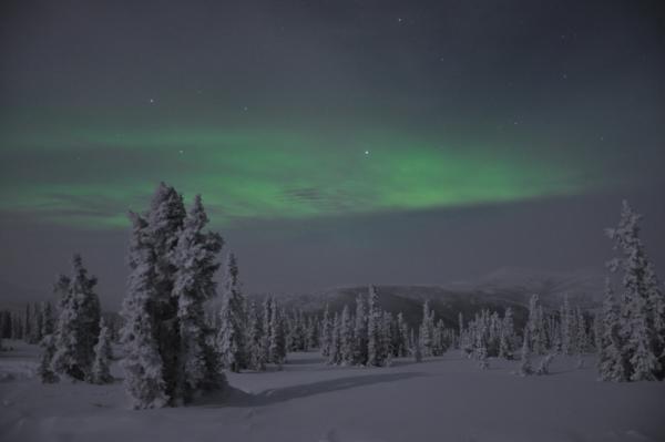 アラスカ写真048