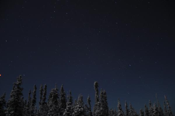 アラスカ写真071