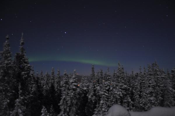 アラスカ写真072