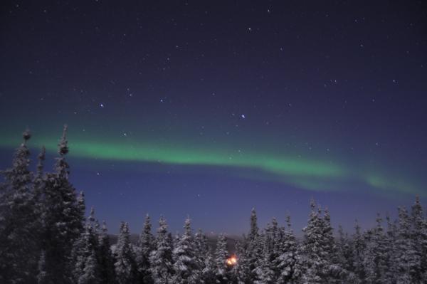 アラスカ写真075
