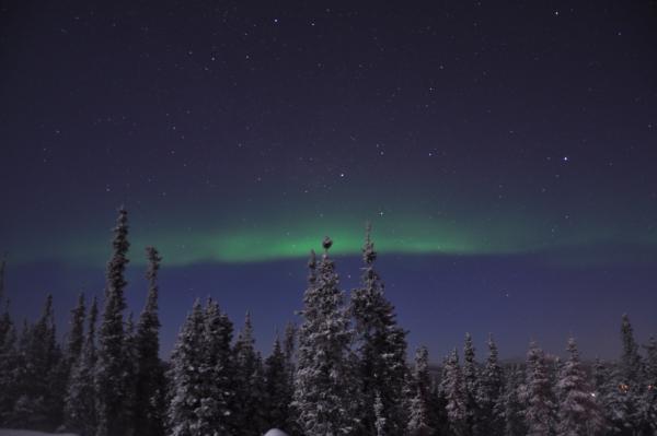 アラスカ写真076