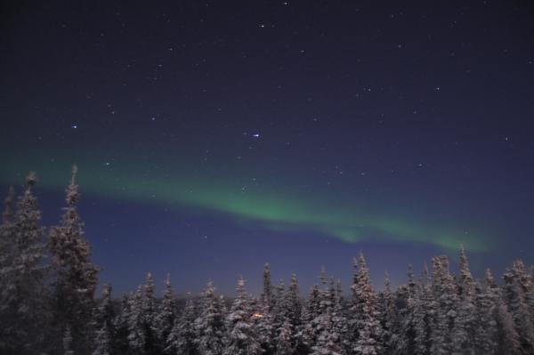 アラスカ写真079