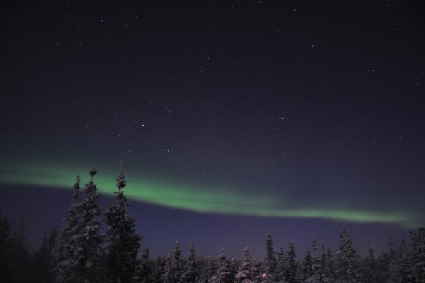 アラスカ写真081