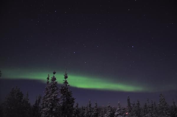 アラスカ写真082