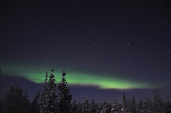 アラスカ写真083