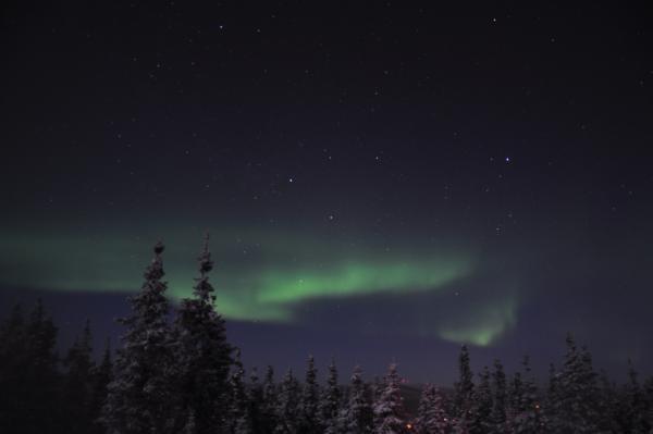 アラスカ写真084