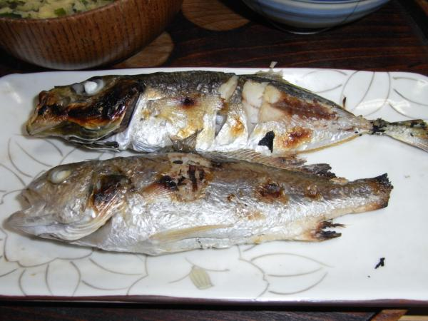 20120219釣り06