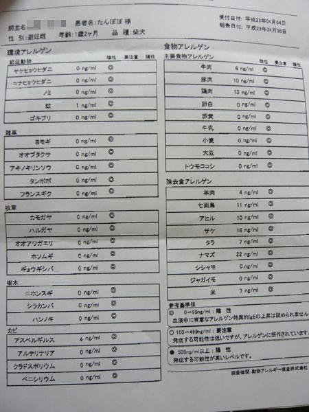 P1280380.jpg