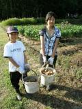 長野イモ掘り