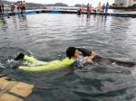 イルカと一緒にSwim