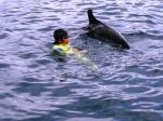 イルカと遊ぶ大我3