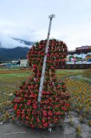台東關山のお花畑で楽器型の花オブジェ