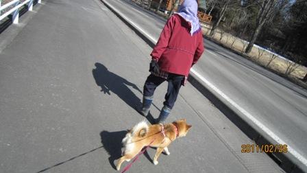 散歩2月26日5