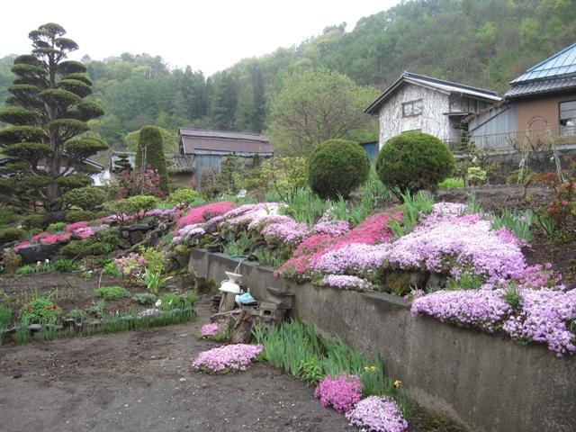 鴇久保・小林邸の庭4