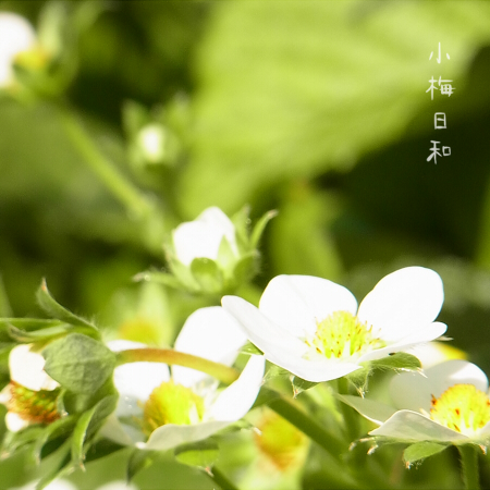 blog220.jpg