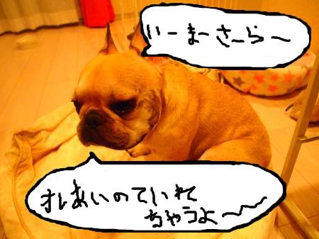 P8072925_convert_20110807224925.jpg