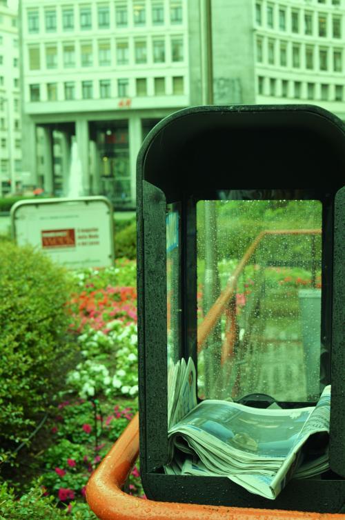 DSC 7000 convert 20110623063705 - 夏の長雨