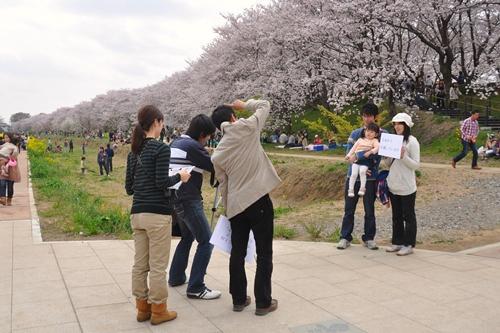 権現堂桜堤201104 245