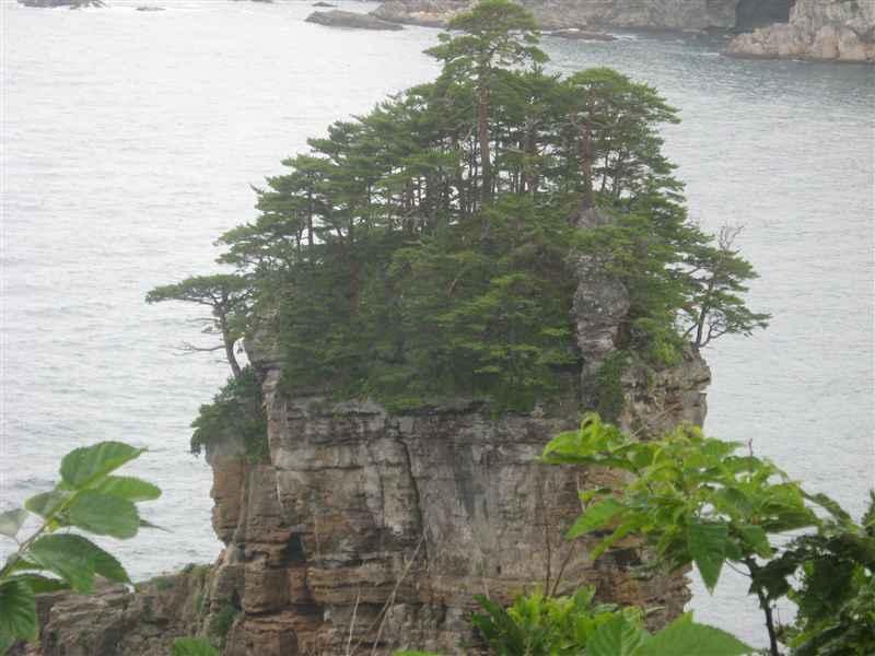 7月24日山王岩2