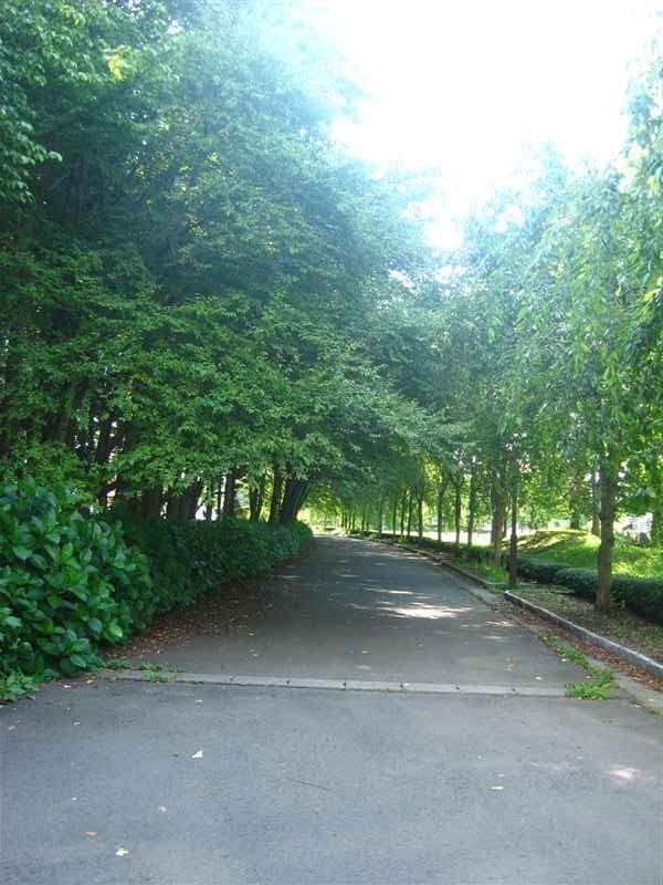 都南中央公園7