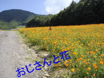 DSC02647.jpg