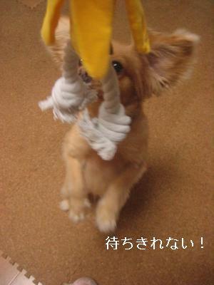 bananaomotya.jpg