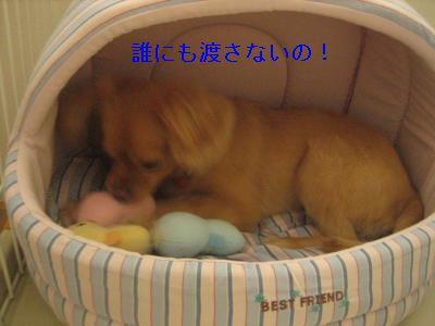 namihei2.jpg