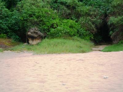 blogマブヤーP1020052