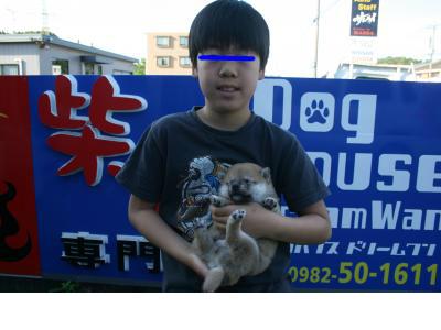 snap_tikagenoko414_20123512736.jpg