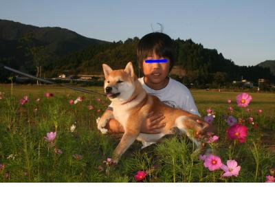 snap_tikagenoko414_201236233829.jpg