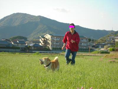 snap_tikagenoko414_20124015256.jpg