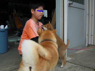 snap_tikagenoko414_20124214851.jpg