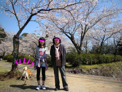 snap_tikagenoko414_201243215336.jpg