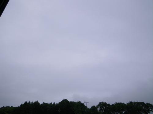 雨降り529